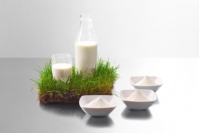 Milch und Milchpulver von Uelzena Ingredients